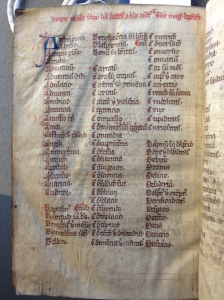 Ms. Codex 1640, Headings A-D, with Abstinence and Conscience